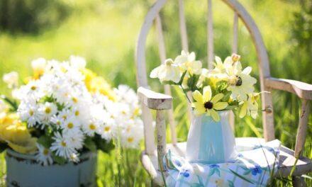 Få vennerne til at hjælpe med at gøre haven forårsklar